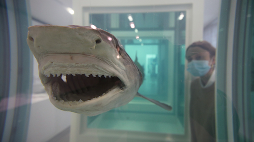 Damien Hirst a Roma