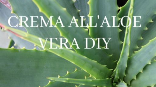 Crema viso all'aloe vera: come farla